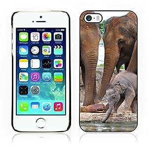 Carcasa Funda Case// Elephant V0000046 //Apple iPhone 5 / 5S