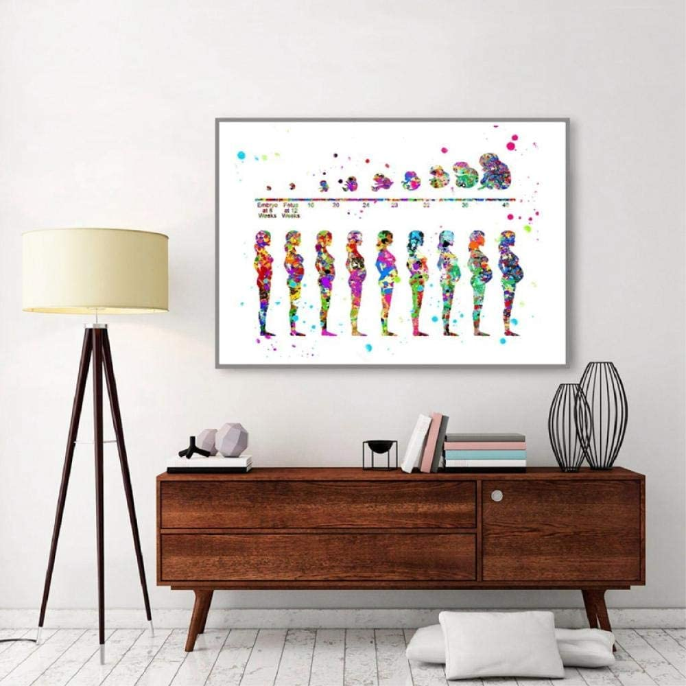 Etapas del embarazo Imprimir Arte médico Desarrollo fetal Cartel Feto Acuarela Arte Lienzo, Pintura Obstetra Oficina Decoración de la pared 60x90cm Sin marco