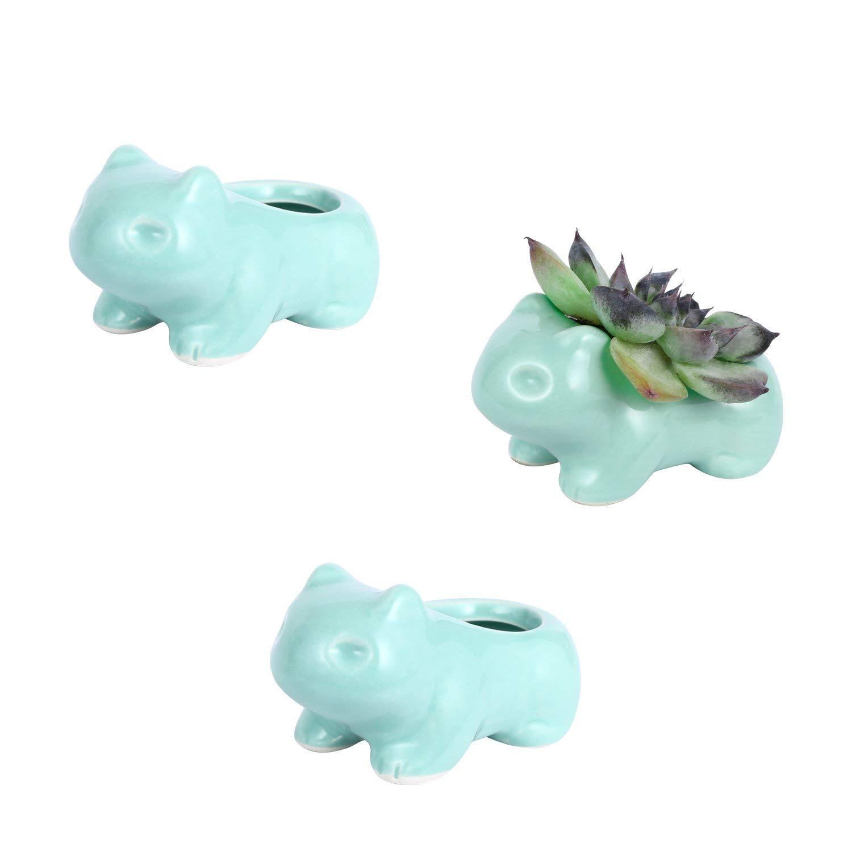 DOYOLLA Mini Bulbasaur Succulent Planters Cute Animal Flower Pots Flower Vases 3 Pack