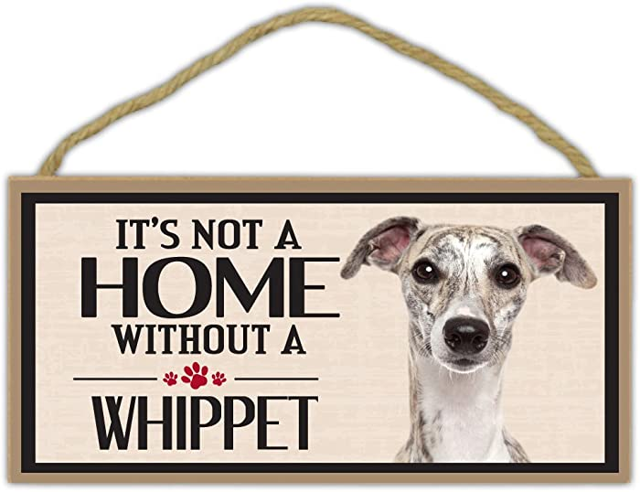 Top 5 It's Not A Home Jack Russell