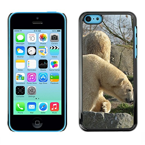 Premio Sottile Slim Cassa Custodia Case Cover Shell // F00029779 Ours polaires // Apple iPhone 5C