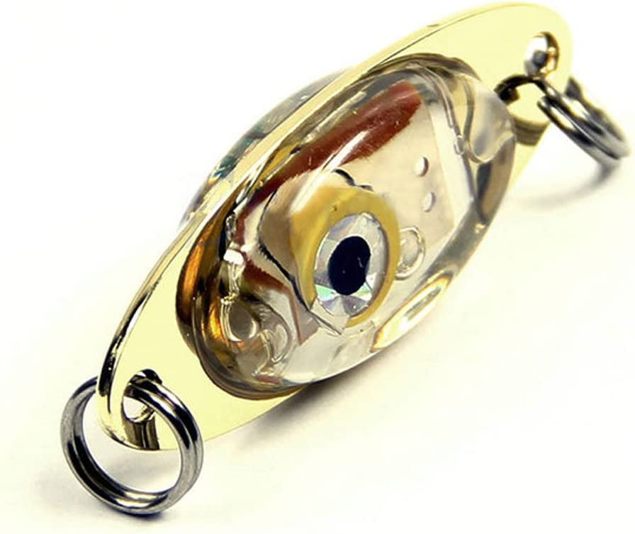 Wingbind Fish Bait LED Light Lure Stylish Fish Attractors Underwater Deep Drop Fishing Flashing Lamp Lure Light