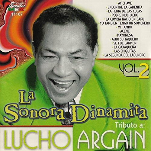 ... Tributo a Lucho Argaín, Vol. 2