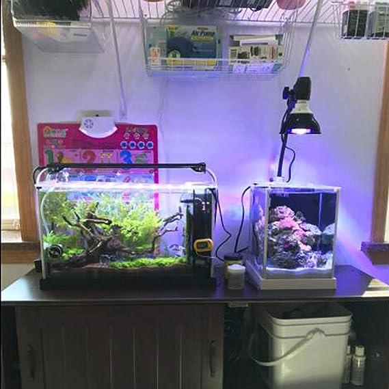 amazon com kingbo led aquarium light nano 18w led aquarium