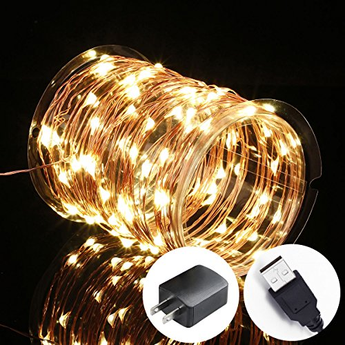 Innotree Fairy Lights USB Plug In, 33Ft 100 LED Warm White Waterproof Starry String Lights for Bedroom Indoor Outdoor - Outlet Springs Premium Palm