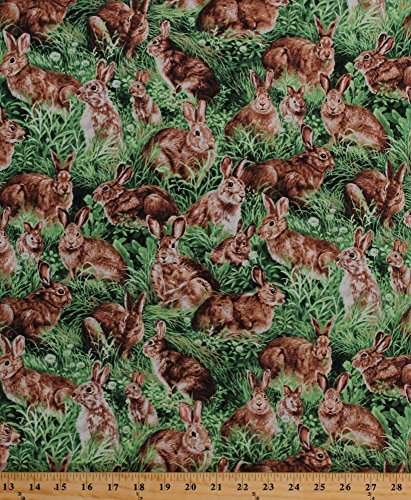 Cotton Bunnies Bunny Rabbits in Grass American Wildlife for sale  Delivered anywhere in USA