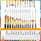 Acrylic Paint Brush Set of 15 – Best Oil
