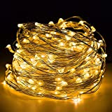 Seastar 100 LEDs Starry String Lights 33ft/10m Silver Copper Wire With Wireless Remote Control And Power Adapter , Decor Rope Lights for Garden, Patio, Tree, Party, Xmas, Indoor and Outdoor Decor (Warm White)