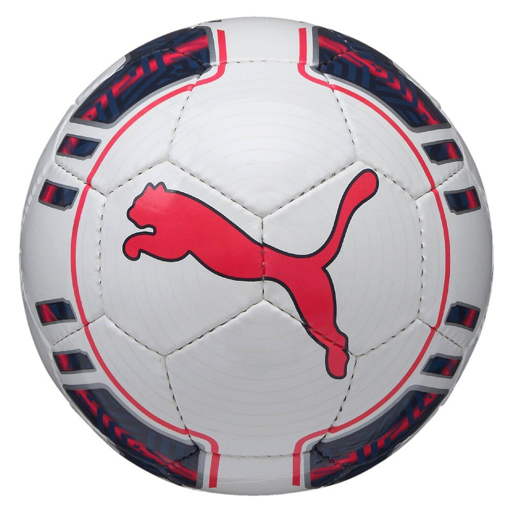 Puma Evopower 5 futsal 082235 15