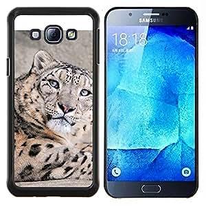 Caucho caso de Shell duro de la cubierta de accesorios de protección BY RAYDREAMMM - Samsung Galaxy A8 A8000 - Leopardo lindo de la nieve