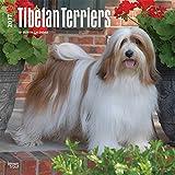 Tibetan Terriers Wall Calendar Dogs 2017 {jg} Best Holiday Gift Ideas - Great for mom, dad, sister, brother, grandparents, , grandchildren, grandma, gay, lgbtq.