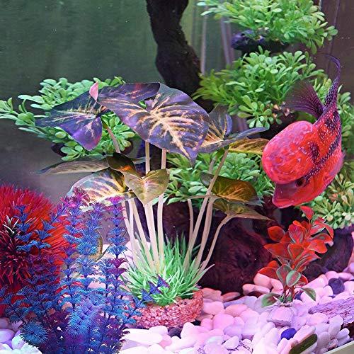 FancyU Plantas acuáticas Artificiales, Plantas de Acuario Decoraciones de acuarios de plástico para acuarios: Amazon.es: Hogar