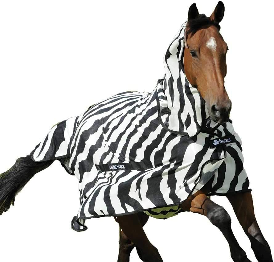 Best Fly Sheets For Horses - Bucas Buzz-Off Zebra Fly Sheet
