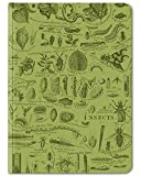 Cognitive Surplus Green Insects Entomology Bug Illustration Notebook. (Large Size, Blank & Lined, 100% Recycled)
