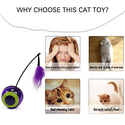 Amazon.com : Best Quality Funny cat Toys Tumbler Ball Toy Electronic Motion Multi Function Automatic Mouse Toys for Cats with Chaser Light Sound : Pet ...