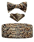Men's Floral Paisley Silk Cummerbund & Self Bowtie and Pocket Square Set Gold