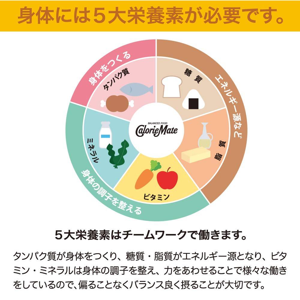 Image of カロリーメイト ブロック チョコレート 2本1
