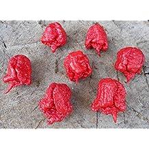 Carolina Reaper Pepper 10 Seeds -Samenchilishop-Seeds-
