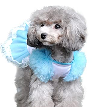 Amazon.com: Pandada disfraz de mascota Perro vestido boda ...
