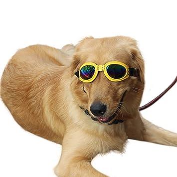 ospet mascota perro gafas gafas de sol gafas de perro Golden ...
