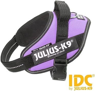 Arnés Julius-K9 IDC Powerharness púrpura Mini Mini - Arnés púrpura ...