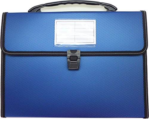 Cypress Lane Expanding File Folders with Handle, 13 Pockets, Letter Size (Blue)
