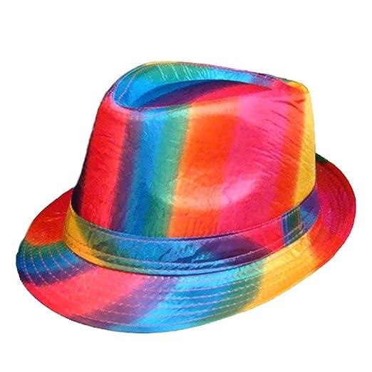 c5b913e2973acd Amazon.com: Gay Rainbow Sisters Gay Pride Hat Rainbow Fedora: Clothing