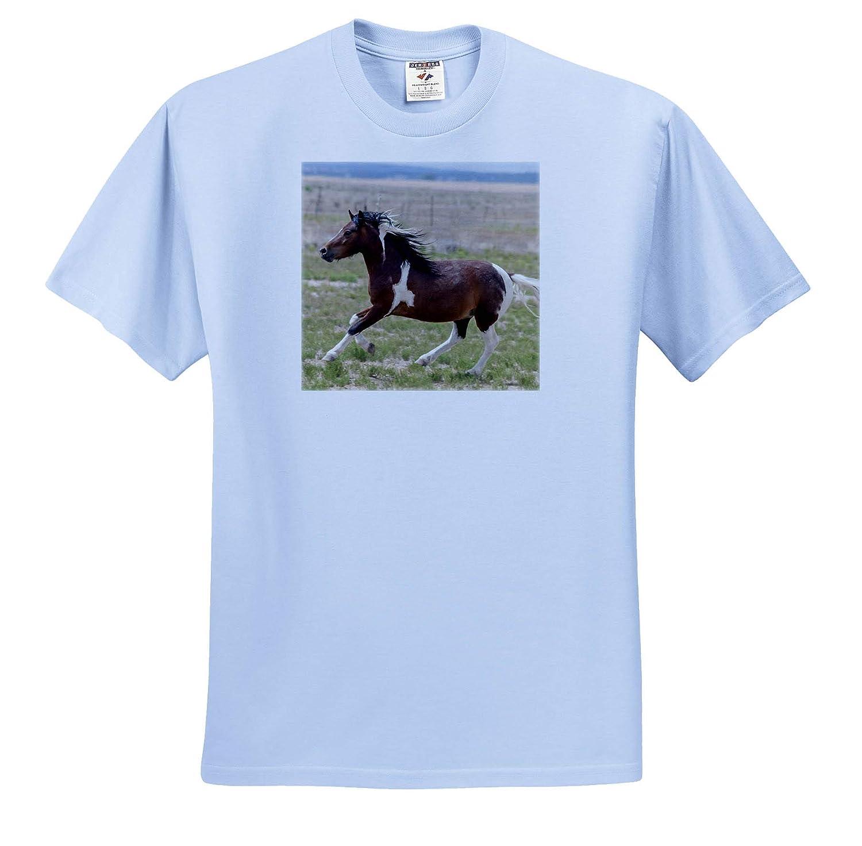 Horse Running Adult T-Shirt XL 3dRose Danita Delimont Horses ts/_314003