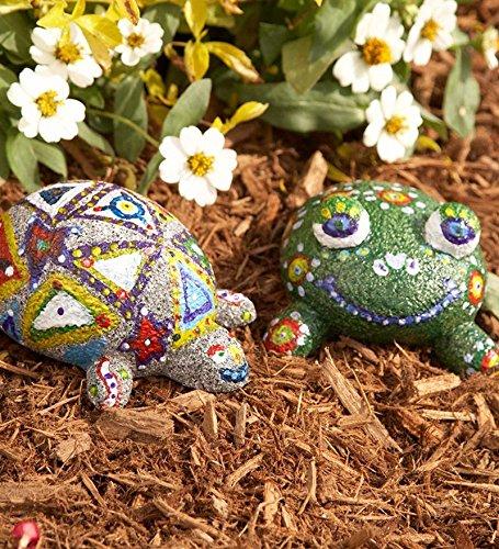 61rNx039d7L - ALEX Toys CC-9011094-WW Craft Rock Pets Frog, Multi