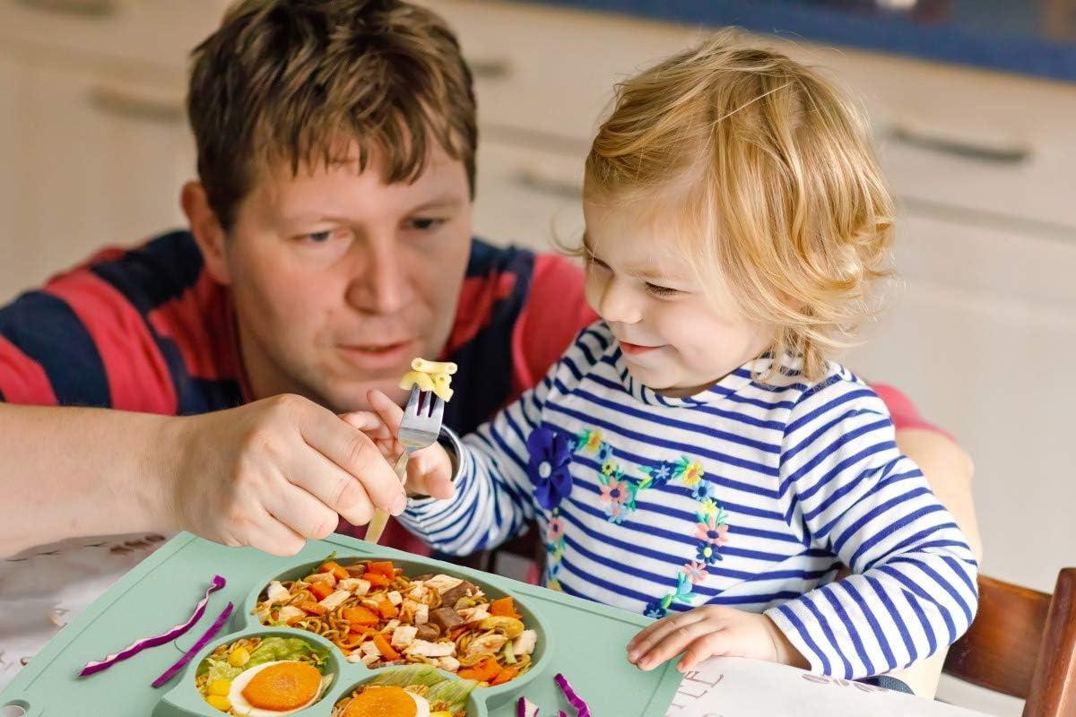 Assiette /à ventouse pour b/éb/é silicone solide et /épaisse set de table pour b/éb/é avec compartiments plaque dalimentation antid/érapante pour tout-petits Les enfants avec une forte aspiration