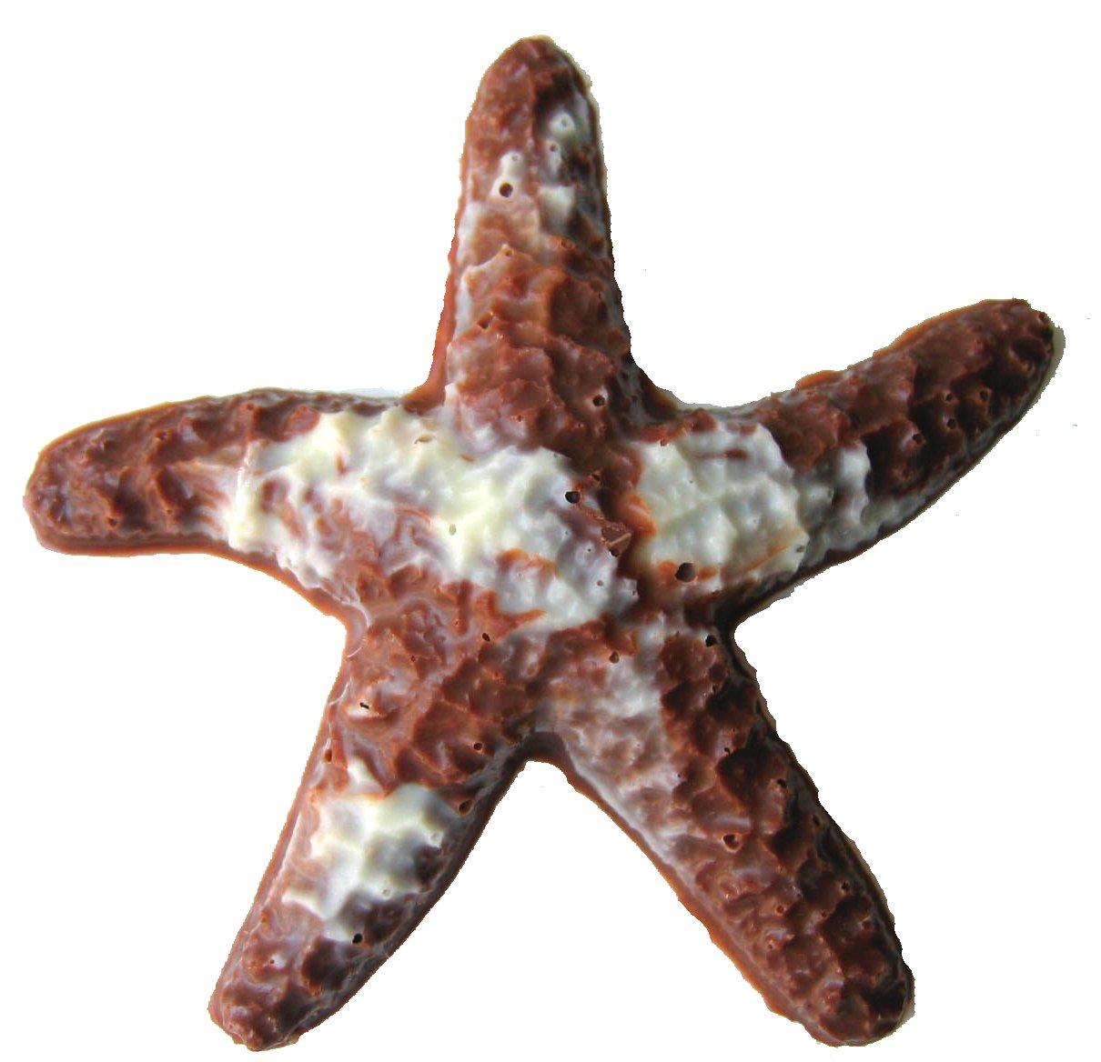 Amazon.com : Chocolate Starfish Gift Bag, Milk Chocolate : Gourmet ...