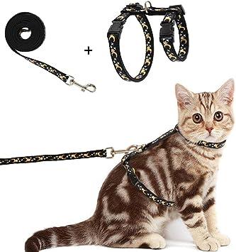 Amazon.com: Busypaws - Arnés para gato con correa, a prueba ...