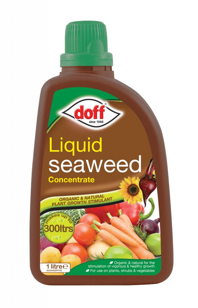 Doff Liquid Seaweed Plant Feed 1L