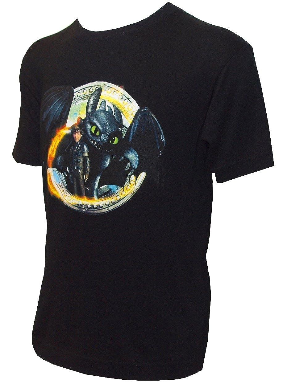 Camiseta Para Niño con Diseño de DreamWorks Cómo Entrenar a tu Dragón, HIPO y Desdentado, Negro: Amazon.es: Ropa y accesorios