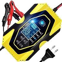 ZHITING Cargador de Batería Coche 12 V/6A 24 V/3A Plomo Ácido Cargador de Batería con Pantalla LCD Battery Charger para…