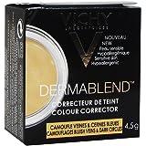 Vichy Dermablend Correttore Del Colore Yellow Giallo Capillari E Occhiaie 4,5 g