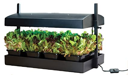 Amazon.com: Garland Grow Light Garden: Jardín y Exteriores