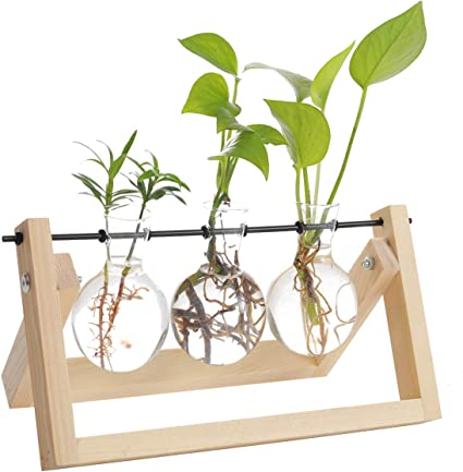 Iwtmm Office Plant Terrarium with Wooden Stand 3 Bottle Solid Air Retro Accessories for Hydroponics Plants Stand Holder Home Garden Wedding Decor Desktop Glass Planter Bulb Vase