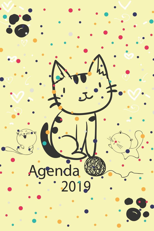 Agenda 2019: Agenda Mensual y Semanal + Organizador I Cubierta con tema de Gatos Enero 2019 a Diciembre 2019 6 x 9in: Amazon.es: Casa Gato Journals: Libros
