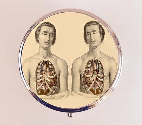 Amazon.com: Anatomy Men Pill Box Pillbox Case Holder Anatomical ...
