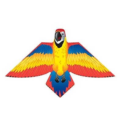 XKites Birds of Paradise - 54 inch Red Parrot Kite: Toys & Games