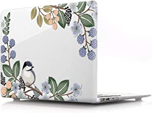 HRH Hand Painted Bird Clear Glossy Laptop Body Shell Protective PC Hard Case for MacBook Air 13.3