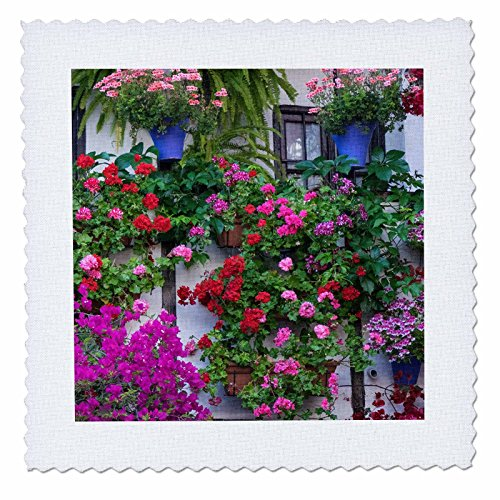 3dRose Danita Delimont - Flowers - Spain, Andalusia. Cordoba. Flowers during the Festival of the Patio. - 20x20 inch quilt square (qs_277892_8) by 3dRose