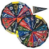 NHL Hockey Complete 31 Team 4x9 Mini Pennant Set (Includes Las Vegas Golden Knights)