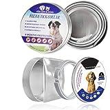 Bayer animal health seresto tick control adjustable waterproof collar protect Dogs kenmore 2pcs