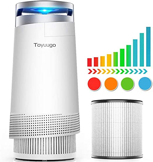 Toyugo Anion Air Purifier - Purificador de aire con filtro HEPA (99,97% de potencia) con filtro de carbón activo con luz LED nocturna para alérgicos y fumadores: Amazon.es: Hogar