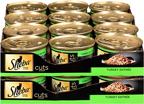 Canned Cat Food For Picky Eaters