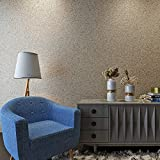 HANMERO Luxury Design Vermiculite Mica Stones Wallpaper Wall Covering for Home, Bedroom, Dining Rooms and Hotel Wall Art Wall Decoration - MC (300cm x 53cm) Modern Designer Wall Paper (Beige)