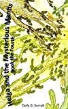 img - for Helga and the Mysterious Mantis: Book the Fourth (The Chronicles of Helga 4) book / textbook / text book