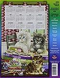 Design Works Crafts DW4293 Sequin Calendar 2019 Kitties Design Works Quilting